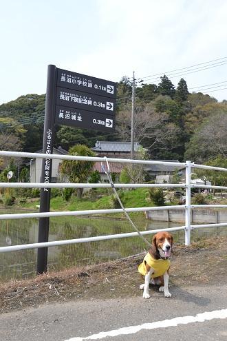 20110425 長沼城祉01