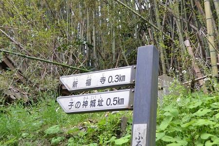 20110425  押畑城祉 01