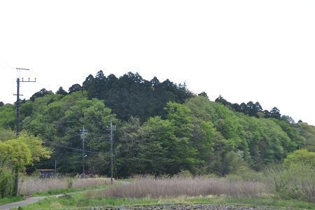 20120428木出城祉07
