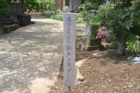 0120516結縁寺02