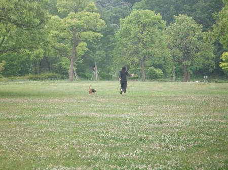 20120525朝散歩06