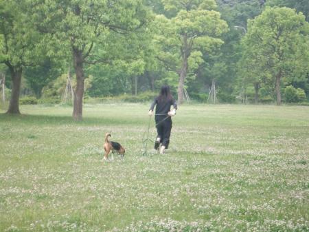20120525朝散歩05