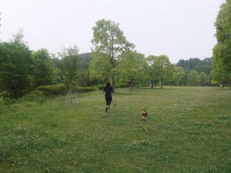 20120525朝散歩04