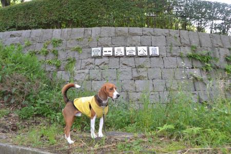 01120531富士見台公園01