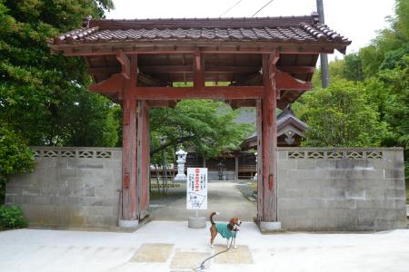 20120605龍尾寺02