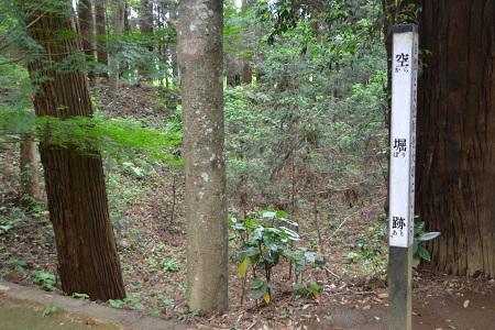 20120605飯高寺12