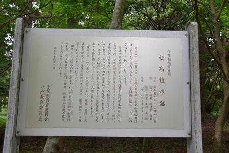 20120605飯高寺08
