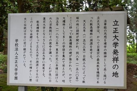 20120605飯高寺14