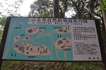 20120605飯高寺37