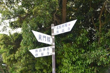 20120605飯高寺(飯高檀林)29