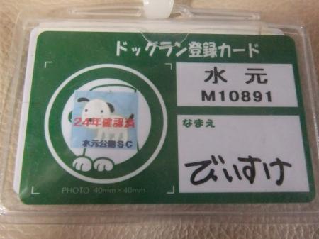 20120615水元公園ドッグラン01