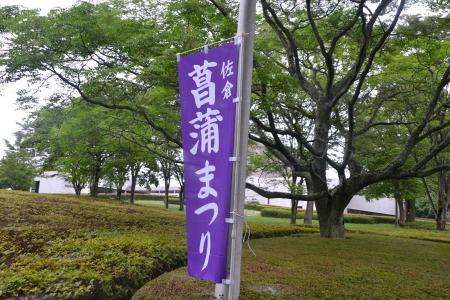 20120616佐倉菖蒲まつり02