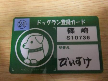 20120619篠崎公園ドッグラン01