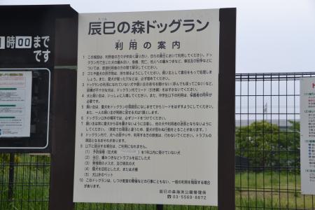 20120619辰巳の森海浜公園03