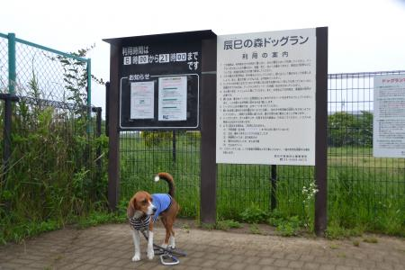 20120619辰巳の森海浜公園02