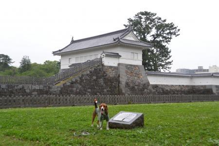 20120623小田原城02