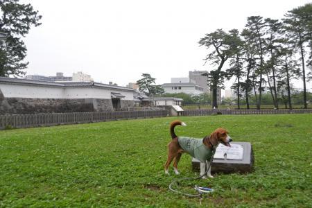 20120623小田原城01