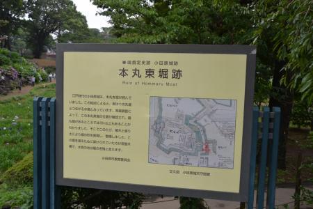 20120623小田原城09