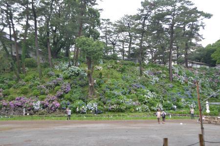 20120623小田原城07