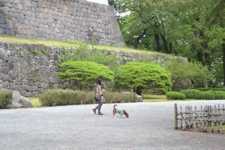 20120623小田原城18