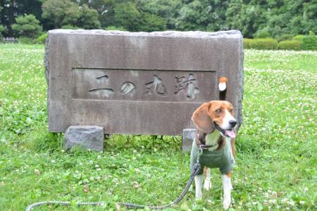 20120623石垣山一夜城26