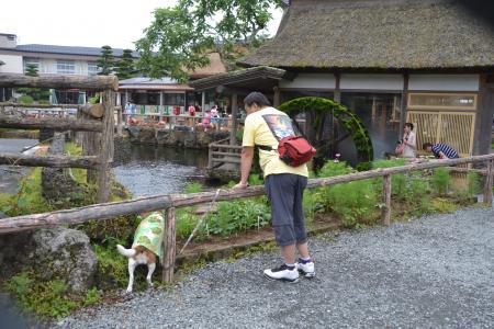 20120720忍野八海05