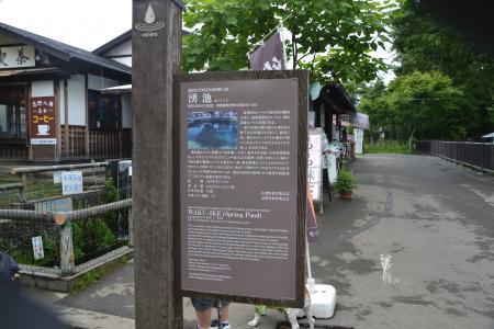20120720忍野八海01