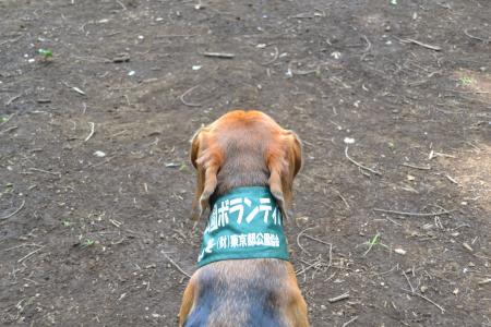 \20120724小山内裏公園08