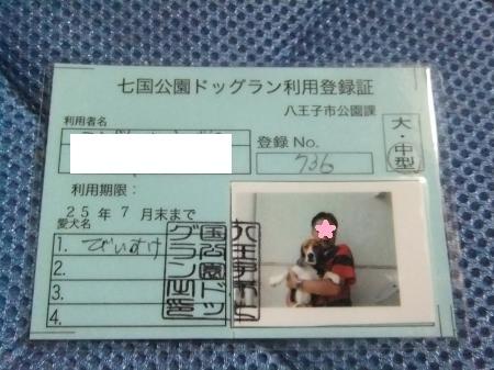 20110811七国利用証