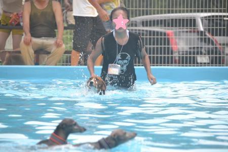 20120812ひぬまドッグラン プール編06