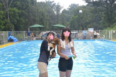 20120812ひぬまドッグラン プール編02