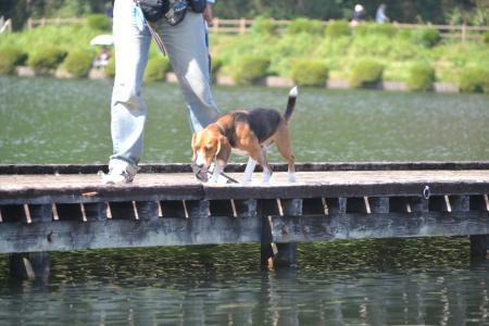 20121007田貫湖17