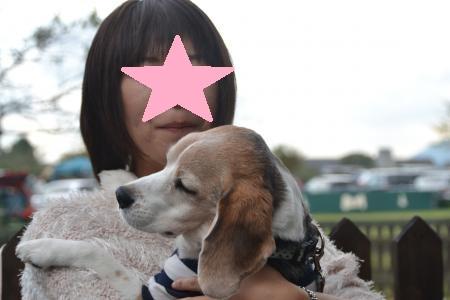 20121007朝霧その1 03