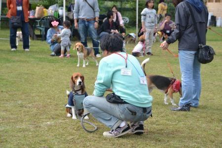 20121007朝霧ゲーム09