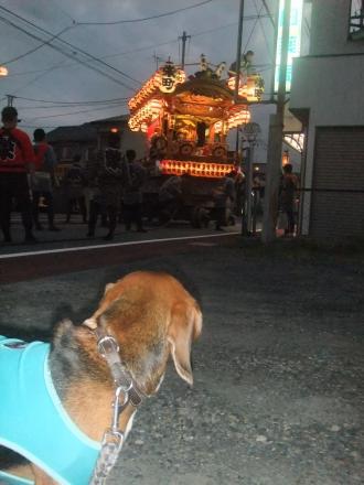 20121012佐倉秋祭り初日 06