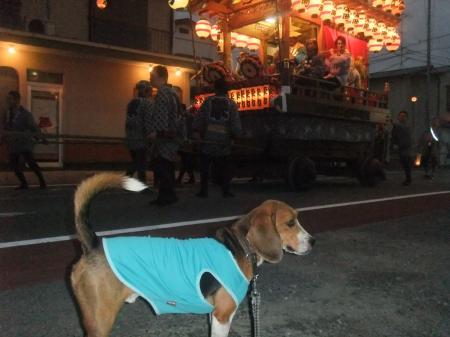 20121012佐倉秋祭り初日 08