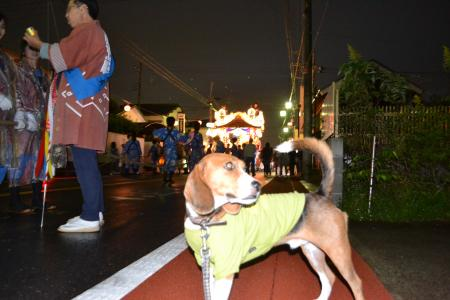 20121014佐倉秋祭り3日目 05