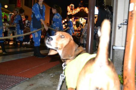 20121014佐倉秋祭り3日目 03