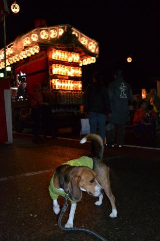 20121014佐倉秋祭り3日目 07
