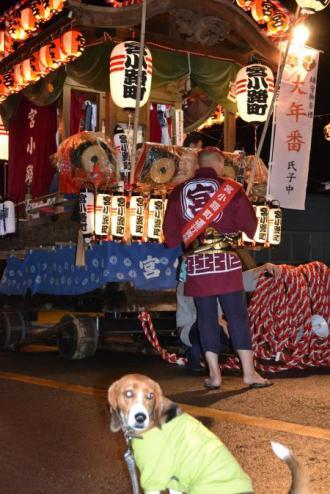 20121014佐倉秋祭り3日目 14