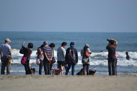 20121021本須賀海岸14