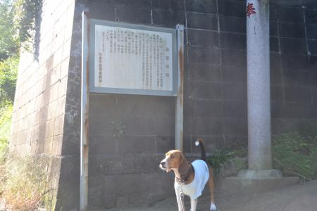 20121026岩富城址02