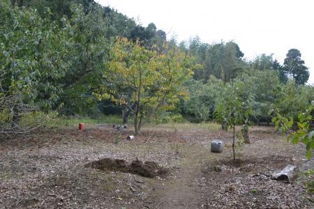 20121105江弁須城址04