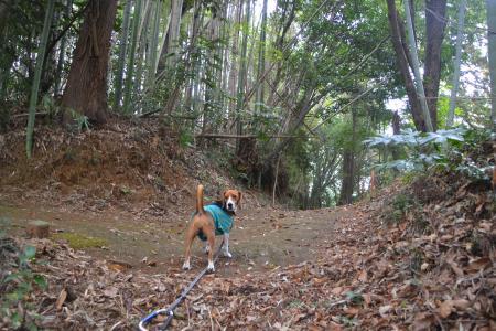 20121105江弁須城址09