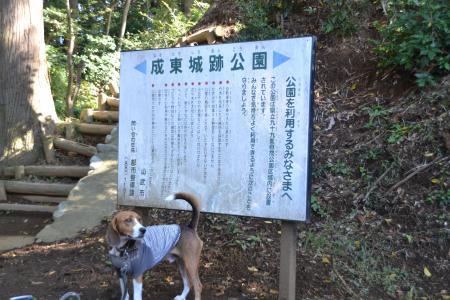 20121108成東城址04