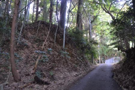 20121108松尾城址05