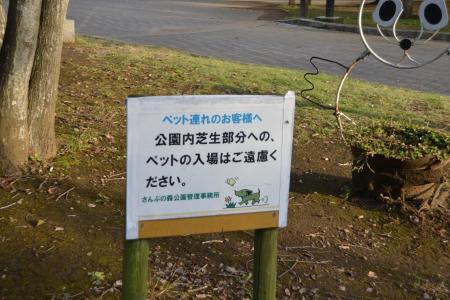 20121108さんぶの森公園03