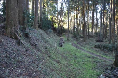 20121108さんぶの森公園18