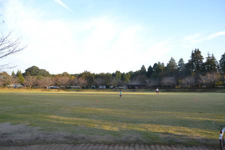 20121108さんぶの森公園20