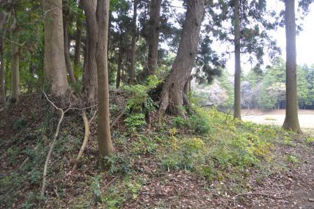 20121111御茶屋御殿14